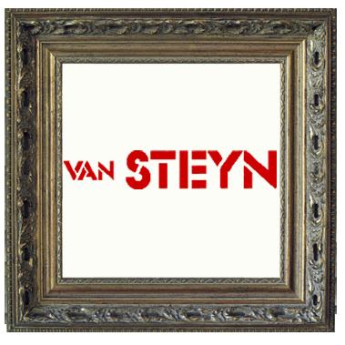 van-steyn